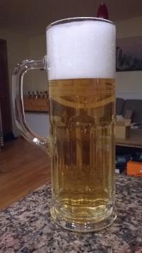 Mi Munich Helles, Goldener Löwe, una semana después de embarrilada